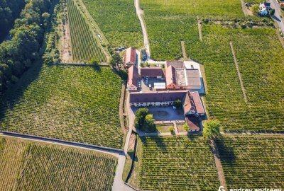 Домейн Вайнбах (Domaine Weinbach) - Елзас, Франция
