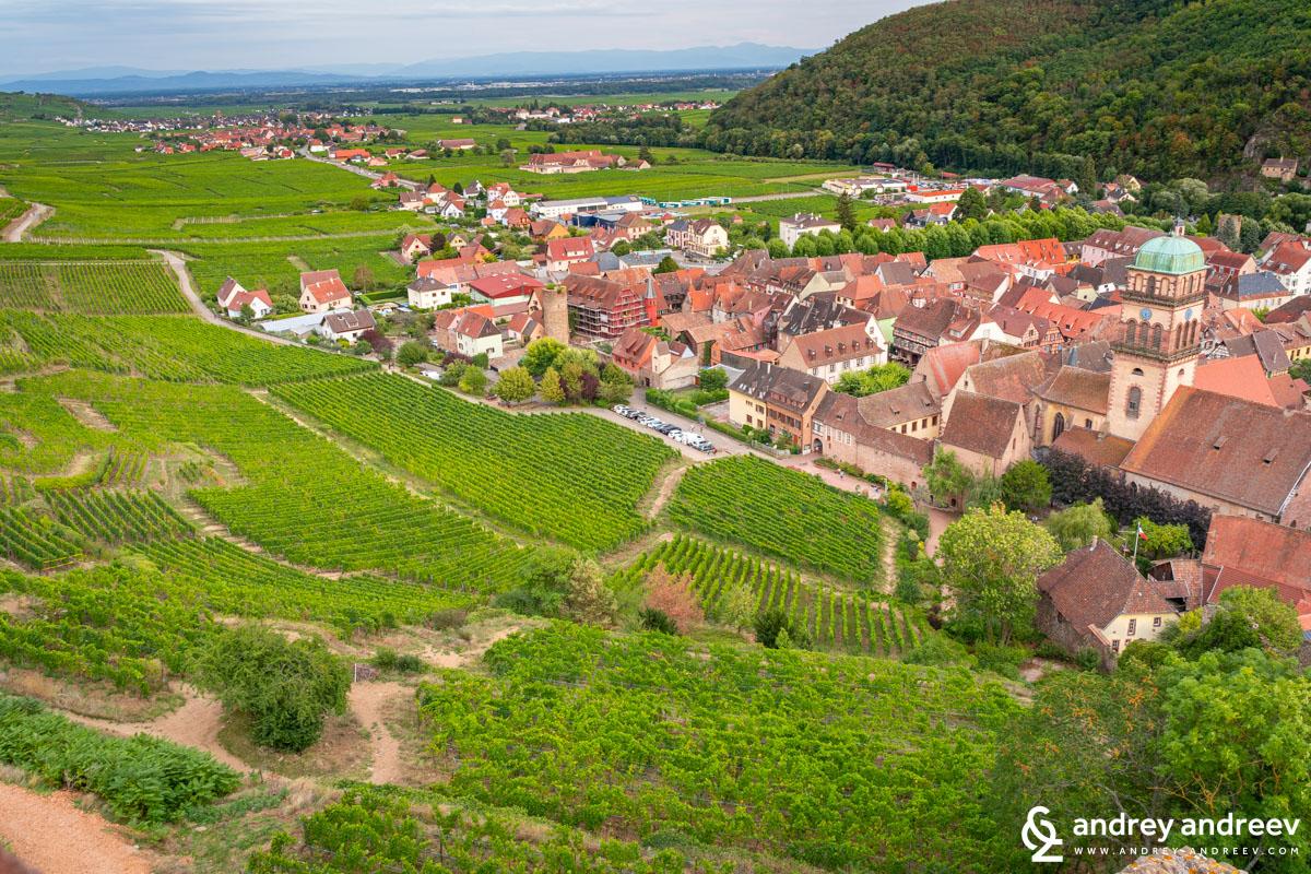 Kaysersberg and one of the Grand Cru vineyards
