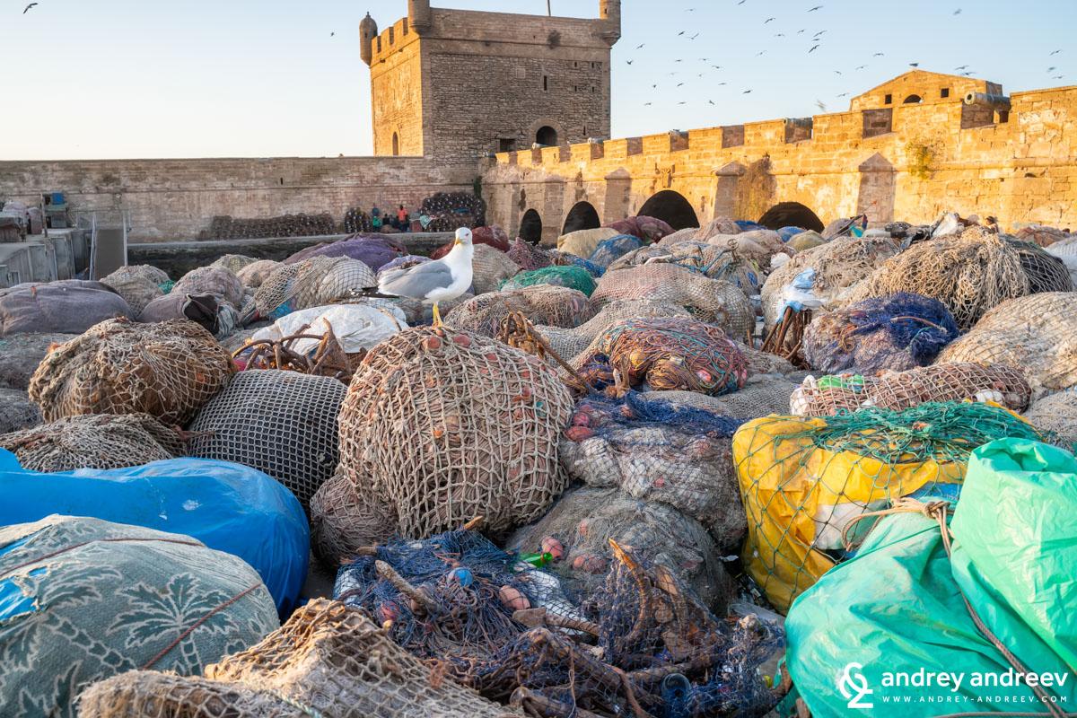 В днешно време пристанището се използва основно за риболов, затрупано е с рибарски мрежи