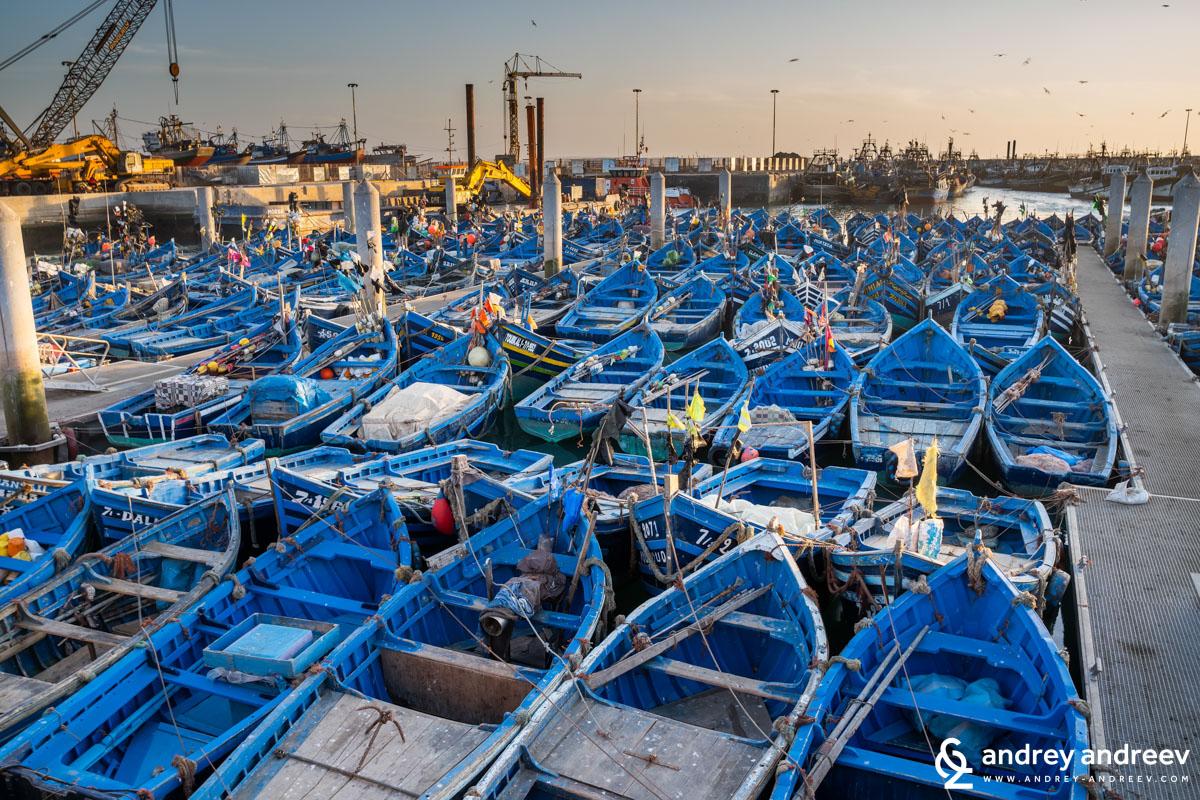 Сините лодки на Есауира подредени в стройни редици и полюшващи се лекичко